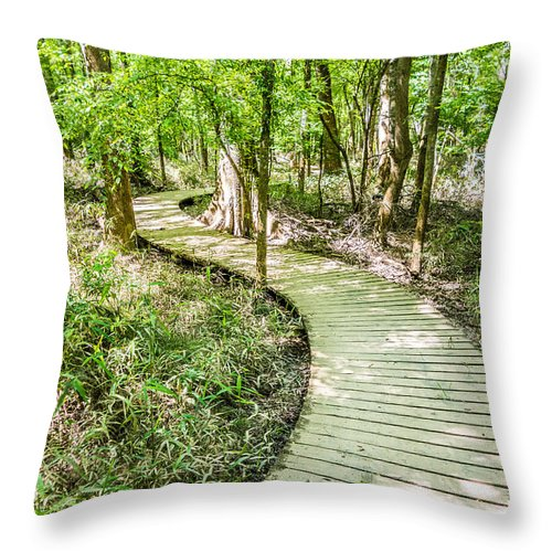 Bridge Throw Pillow featuring the photograph cypress forest and swamp of Congaree National Park in South Caro by Alex Grichenko