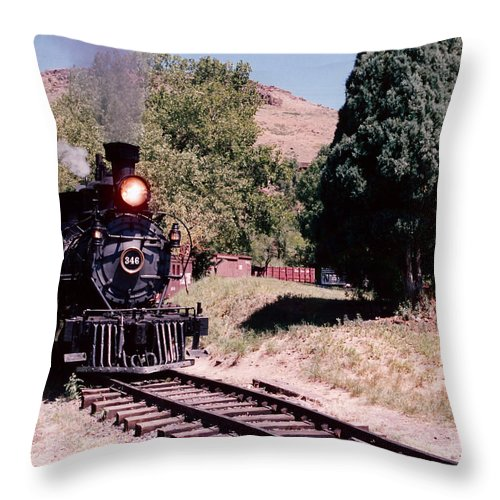 Pat Turner Throw Pillow featuring the photograph 346 by Pat Turner