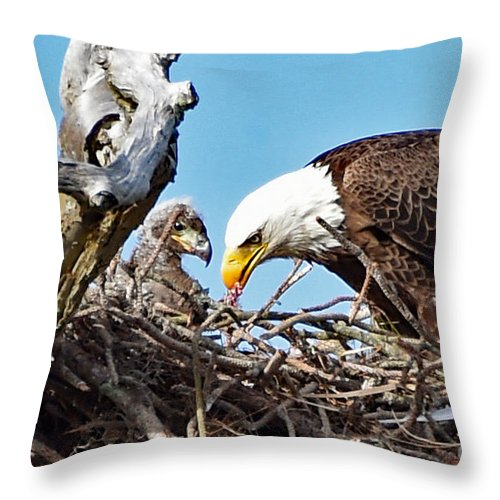 Throw Pillow featuring the photograph 3500 by Don Solari