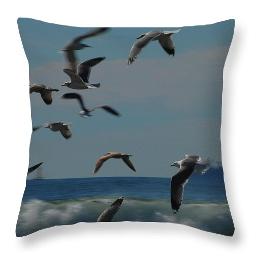 Gull Throw Pillow featuring the photograph 3d Gulls by Jean Booth