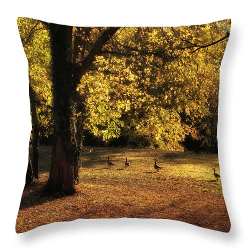 Autumn Throw Pillow featuring the photograph Autumn Promenade by Jessica Jenney