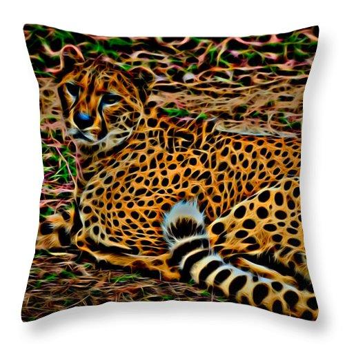 Cheeta Throw Pillow featuring the photograph Cheeta by David Pine