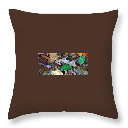 Fall Color Leaf Throw Pillow featuring the photograph Colors Of The Fall by Wolfgang Schweizer