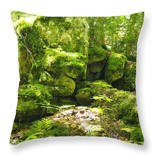 Clearing Throw Pillow featuring the photograph Forestry by FL collection