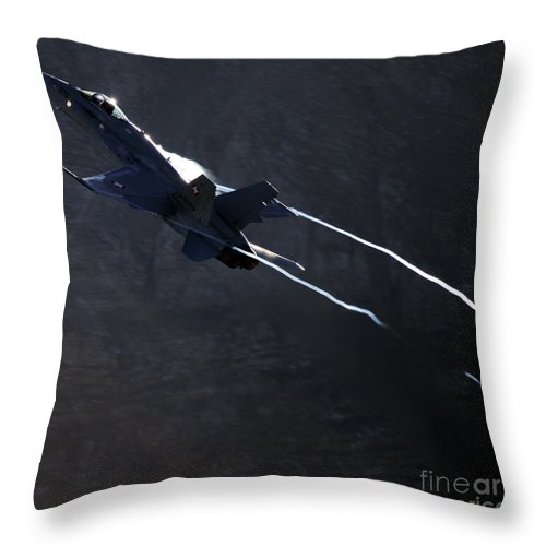 Axalp Throw Pillow featuring the photograph Phoenix by Angel Ciesniarska