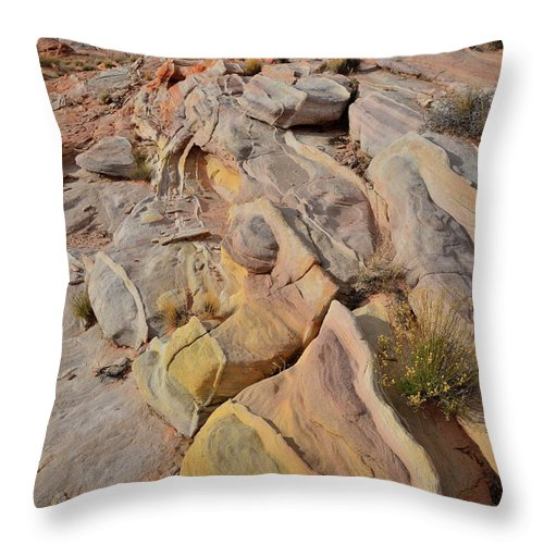 Valley Of Fire State Park Throw Pillow featuring the photograph Rainbow Of Color In Valley Of Fire by Ray Mathis