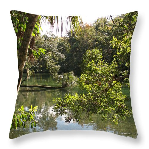 Swamp Throw Pillow featuring the photograph Swamp Reflection by Christiane Schulze Art And Photography