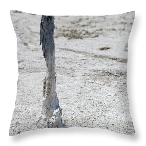 Yellowstone Throw Pillow featuring the photograph Yellowstone National Park by Kati Finell