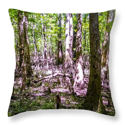 Carolina Throw Pillow featuring the photograph cypress forest and swamp of Congaree National Park in South Caro by Alex Grichenko