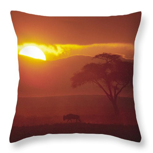 Africa Throw Pillow featuring the photograph African Sunrise by Michele Burgess