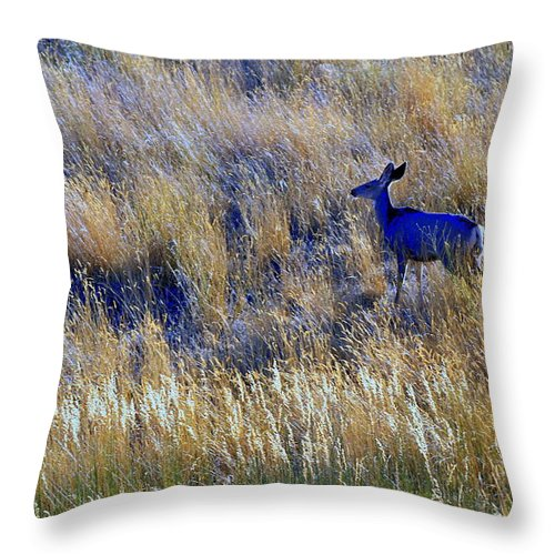 Deer Throw Pillow featuring the photograph Deer Outdoors. by Oscar Williams