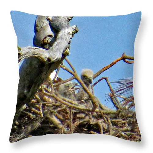 Throw Pillow featuring the photograph 5238 by Don Solari