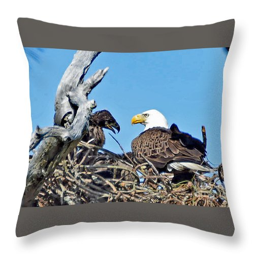 Throw Pillow featuring the photograph 5673 by Don Solari
