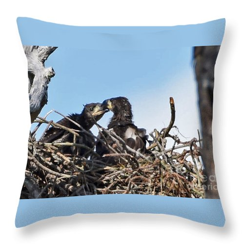 Throw Pillow featuring the photograph 5760 by Don Solari