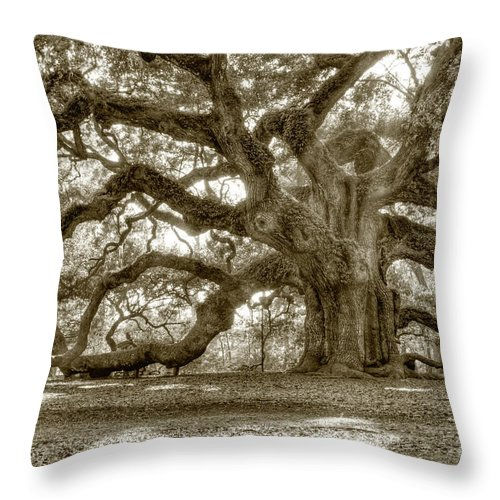 Live Oak Throw Pillow featuring the photograph Angel Oak Live Oak Tree by Dustin K Ryan