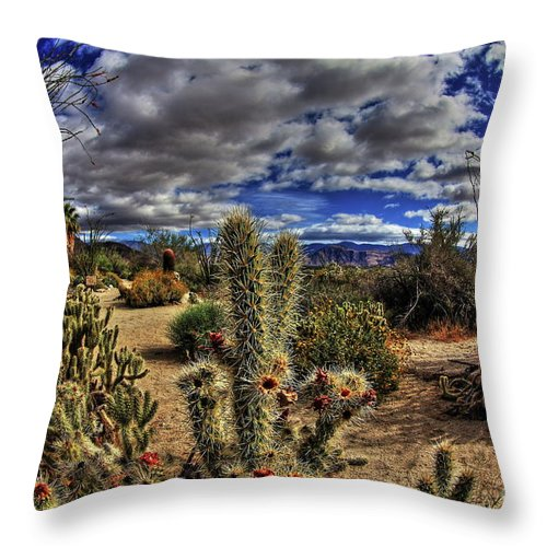 Anza-borrego Desert State Park Throw Pillow featuring the photograph Anza-borrego Desert State Park by Onie Dimaano