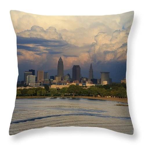 Destination Throw Pillow featuring the pyrography Cleveland Skyline From A Distant Park by Douglas Sacha