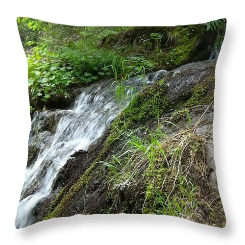 Art Throw Pillow featuring the photograph Waterfall 1 by Ivan Dimov