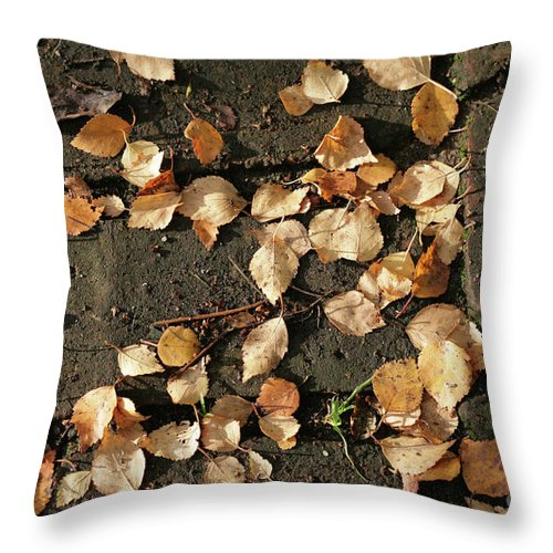 Silver Birch Leaves Lying On A Brick Path In A Cheshire Garden On An Autumn Day  England Throw Pillow featuring the photograph Silver Birch Leaves Lying On A Brick Path In A Cheshire Garden On An Autumn Day  England by Michael Walters