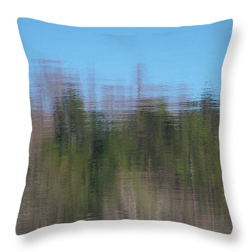 Reflections Throw Pillow featuring the photograph 6000-reflections by Martha Abell