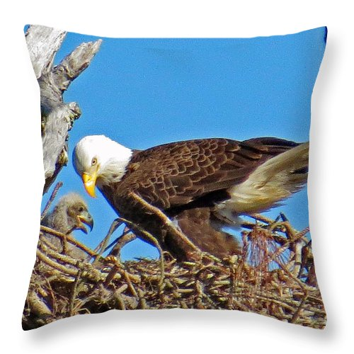 Throw Pillow featuring the photograph 6665 by Don Solari