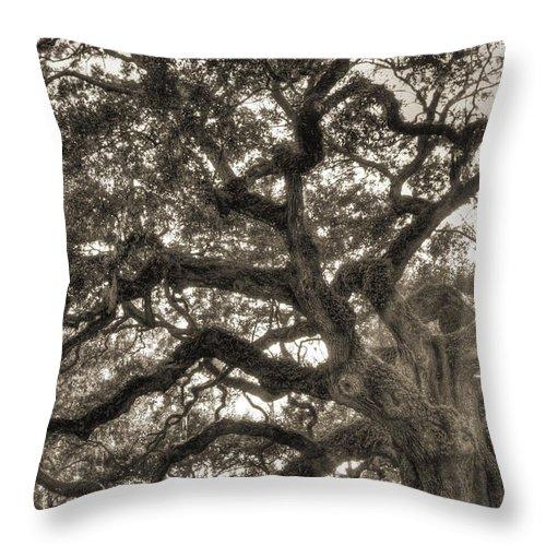 Angel Oak Throw Pillow featuring the photograph Angel Oak Live Oak Tree by Dustin K Ryan
