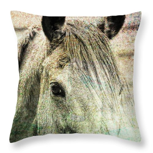 Quarter Throw Pillow featuring the photograph Buckskin Artwork by JAMART Photography