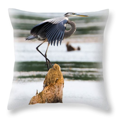 Bird Throw Pillow featuring the photograph Great Blue Heron by Ronald Grogan
