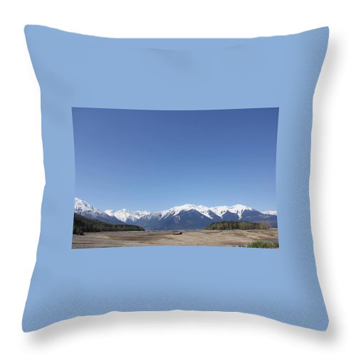 Landscape Throw Pillow featuring the photograph Landscape by Teresita Ganzon Pagliacci