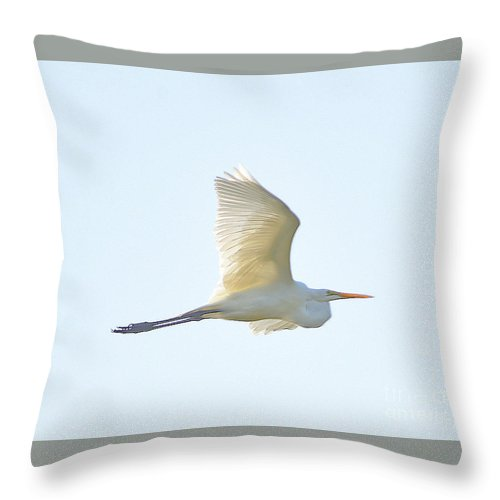 Throw Pillow featuring the photograph 7466 by Don Solari