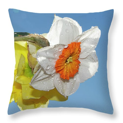 Flowers Throw Pillow featuring the photograph Spring Flowers by Elvira Ladocki