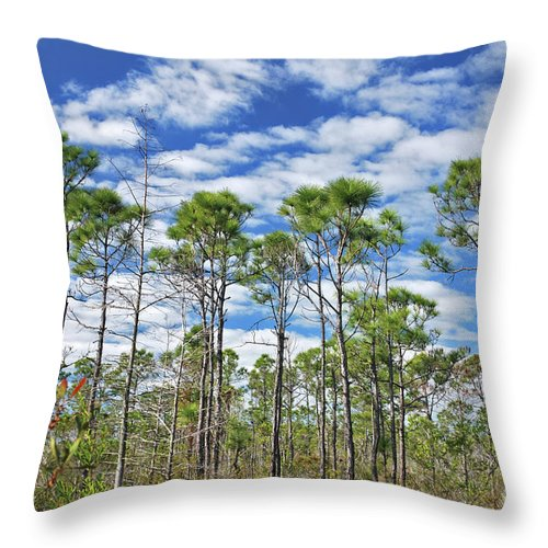 Cypress Trees Throw Pillow featuring the photograph 8- Cypress Sky by Joseph Keane