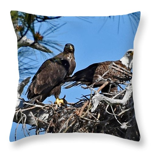 Throw Pillow featuring the photograph 8763 by Don Solari
