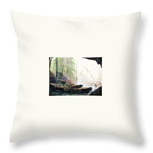 Cave Throw Pillow featuring the painting A Bears View by Gail Kirtz