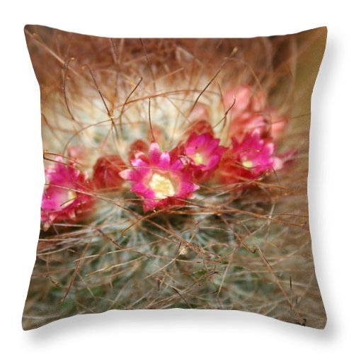 Flowers Nature Throw Pillow featuring the photograph A Beautiful Blur by Linda Sannuti