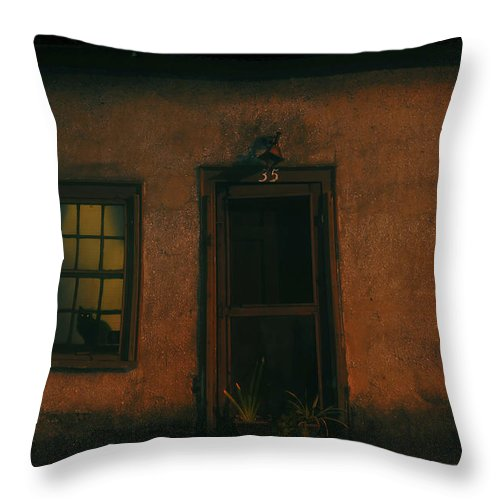 Black Cat Throw Pillow featuring the photograph A Black Cat's Night by David Lee Thompson