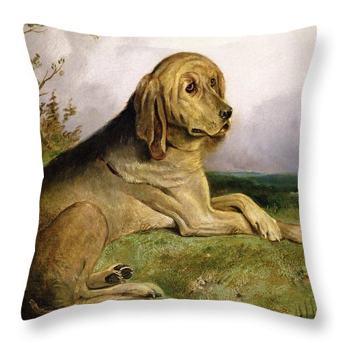 Bloodhound Throw Pillow featuring the painting A Bloodhound In A Landscape by English school