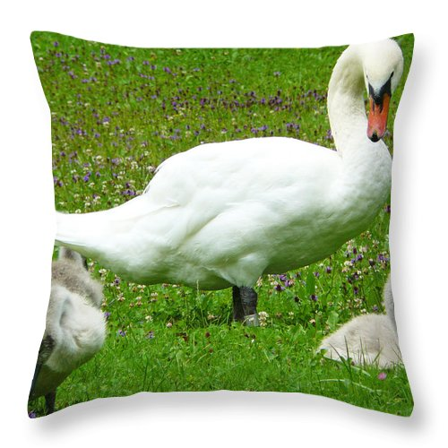 Caring Throw Pillow featuring the photograph A Caring Mother by Daniel Csoka