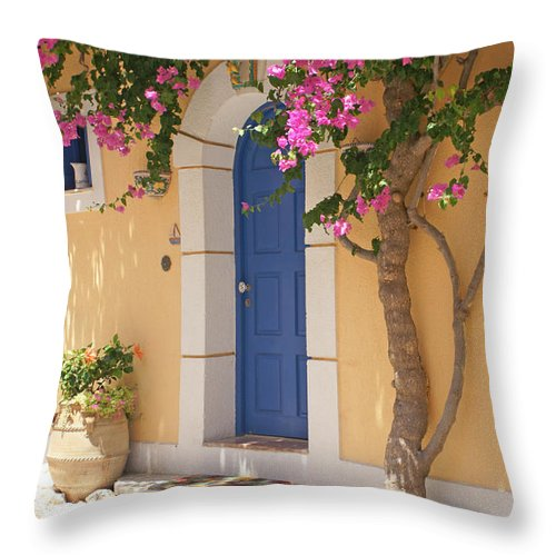 Color Throw Pillow featuring the photograph A Colorful Welcome by David Birchall