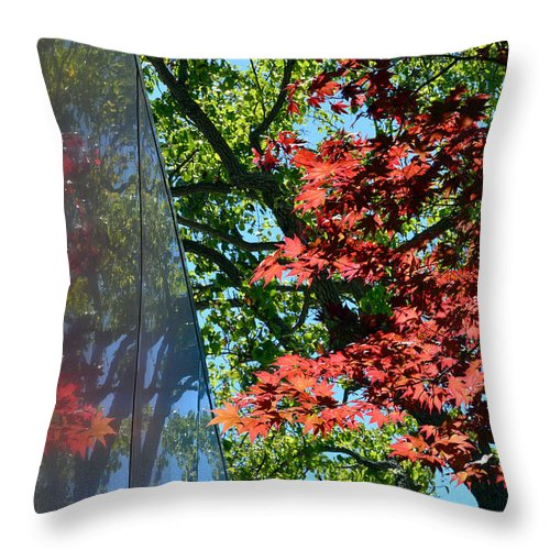 Trees Throw Pillow featuring the photograph A Day Of Reflection by Donna Blackhall