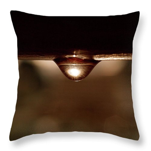 Water Throw Pillow featuring the photograph A Drop Of Sun by Rona Black