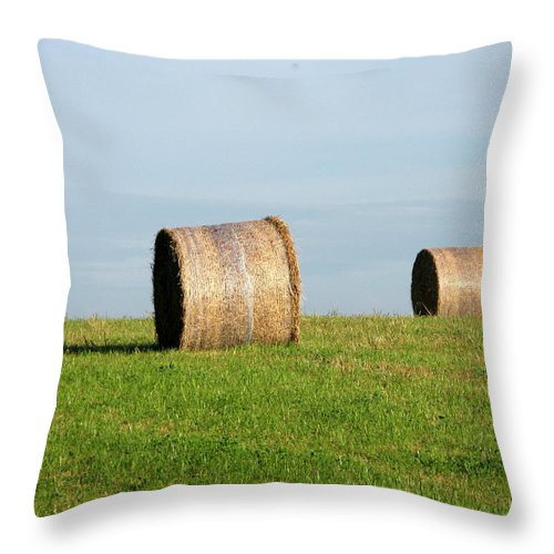 Haybales Throw Pillow featuring the photograph A Fine Day by Maria Joy