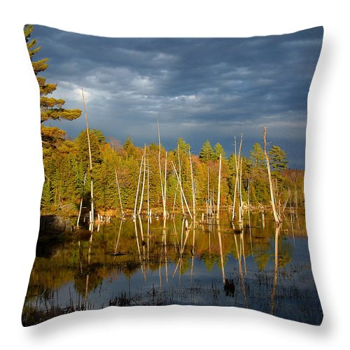 Wetlands Throw Pillow featuring the photograph A Fleeting Sunset Moment by Linda McRae
