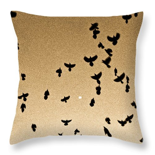 Flock Throw Pillow featuring the photograph A Flight Of Grackles Circling The Moon by John Harmon