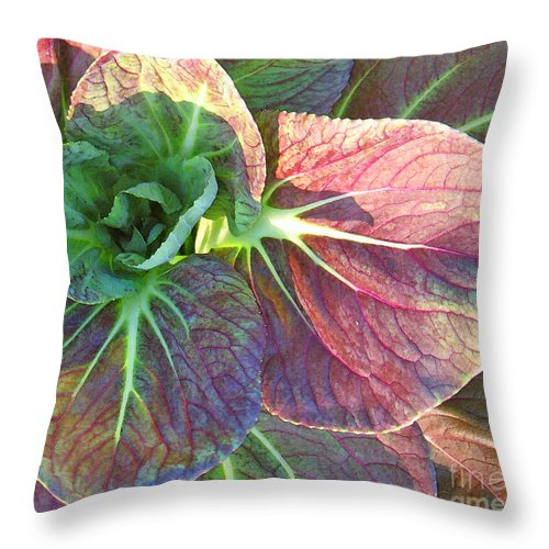 Flower Throw Pillow featuring the photograph A Floral II by Gary Everson