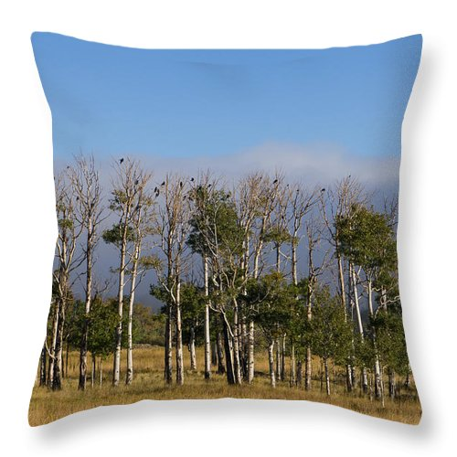 Colorado Photographs Throw Pillow featuring the photograph A Gathering Of Crows by Hulda Benson