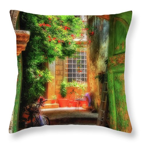 Doorway Throw Pillow featuring the photograph A Glimpse by Lois Bryan