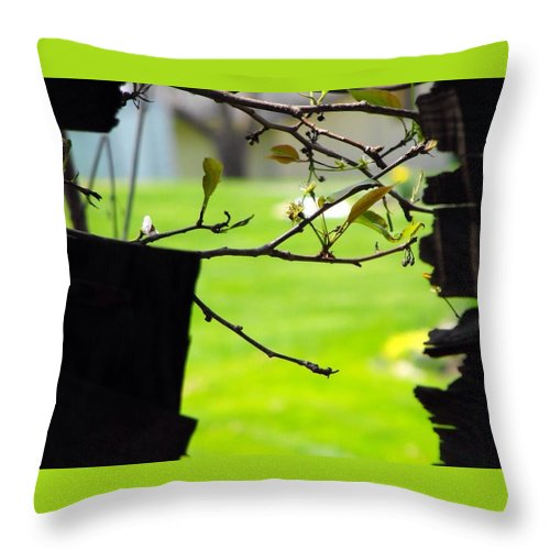 A Glimpse Of Spring Throw Pillow featuring the photograph A Glimpse Of Spring by Beverly Canterbury