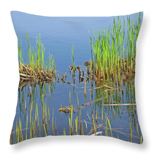 Spring Throw Pillow featuring the photograph A Greening Marshland by Ann Horn