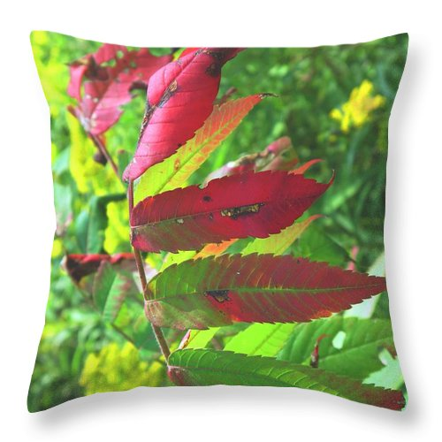 Leaves Throw Pillow featuring the photograph A Hard Tough Summer by Ian MacDonald